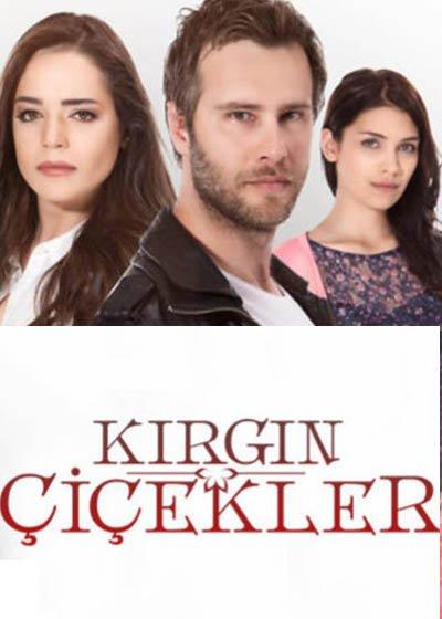 الأزهار الحزينة الجزء الأول Kirgin Çiçekler